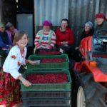 «МРІЯ» допомагає відновлювати кооперативний рух на Тернопільщині