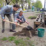У Тернополі сталося неймовірне – на місці, де мали бути МАФи, посадили дерева