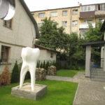 У Тернополі з'явилася скульптура велетенського зуба людини (фото)