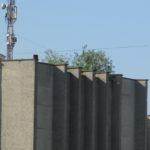 У Тернополі дерева ховаються від людей на дахах будівель (фото)