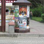 У центрі Тернополя з'явився дуже дивний гриб (фото)
