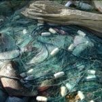 У тернопільських браконьєрів конфіскували півкілометра сіток
