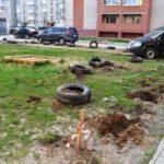У Тернополі з'явилися вандали собаки