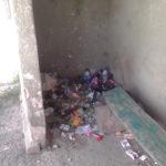 Жителі села на Тернопільщині дуже оригінально утилізують сміття (фото)