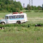 Тернополянка розповіла, як вона у спеку їхала сільським автобусом