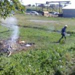 Чому в околицях Тернополя усе частіше хворіють діти