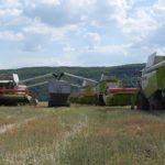 Агрохолдинг «МРІЯ» завершив збирати озимий ріпак