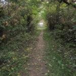 На Тернопільщині є свій Тунель Кохання (фото)