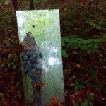 Шукаючи гриби, тернополянка натрапила на велике дзеркало посеред лісу
