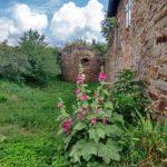 У замку на Тернопільщині живе привид