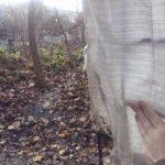 Куди зникають жінки з тернопільського парку (фото)