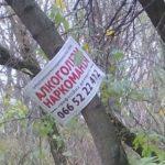 Тернопільські лікарі пропонують свої послуги навіть у парках (фото)