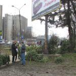 Тернополянин розповів, як не дав заробити продавцям ялинок