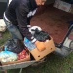 Однопартійці Арсенія Яценюка на Тернопільщині годують бездомних собак