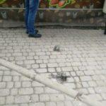 Тернополяни нарікають на небезпечні залізяки (фото)