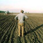 Кому і за що тернопільські аграрії сплатили два мільярди гривень
