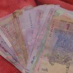 У Тернополі молодята на весіллі збирали гроші для безпритульних тварин (фото)