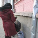 Тернополянки торгують забороненими квітами (фото)