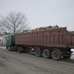 На Тернопільщині викрадачі лісу готові ламати хребти громадським активістам