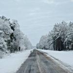 Дорожники Тернопільщини впевнено протистояли зимі