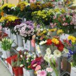Жінки в Тернополі також купують квіти перед 8 Березня