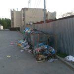 Тернополянка при керівній посаді вимушена ритися у смітниках