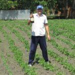 Чоловік з Тернопільщини роками зберігає колорадських жуків у пляшках з-під пива