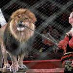 У Тернополі і надалі будуть знущатися з тварин, бо це дозволяє закон