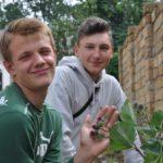 Як у райцентрі на Тернопільщині підлітки важкою працею заробляють гроші