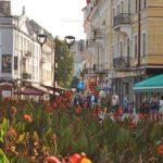Загальна площа зелених насаджень становитиме 40% від усієї території Тернополя