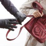 На Тернопільщині смілива пенсіонерка бігла за злодієм через все село