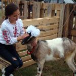 В містечку на Тернопільщині кози зможуть самі собі заробити на харч