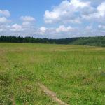 На Тернопільщині прокуратура у суді відстояла право громади на земельну ділянку  вартістю понад півмільйона гривень