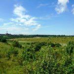 На Тернопільщині прокуратура повернула державі  землю вартістю понад 206 мільйонів гривень