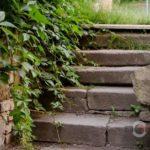 У Тернополі дивом збереглися сходи, якими давно ніхто не ходить