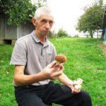Чому людям на Тернопільщині псуються сушені гриби (фото)