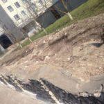 У Тернополі серед ночі покрали дерева