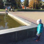 У тернопільському фонтані плавають мертві голуби (фото)