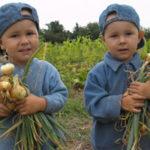 На Тернопільщині сільське населення переважає над міським