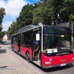 Оплата за проїзд у громадському транспорті: карткою тернополянина дешевше або готівкою дорожче