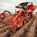 Агрохолдинг «МРІЯ» завершив збирати картоплю