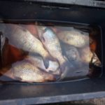 На Тернопільщині дехто продає рибу, яка не має документів