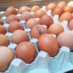 На Тернопільщині жінку судять через курячі яйця