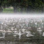 Після дощової весни на Тернопільщину можливо прийде аномально спекотне літо
