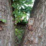 Тернополяни настільки духовні, що вішають ікони у найнесподіваніших місцях