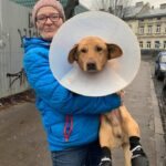 На Тернопільщині для собаки, яка вже знає, що таке людська жорстокість, знайшли домівку (фото)